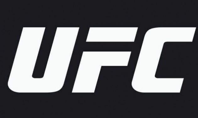 UFC визначив найкращий бій та нокаут року. ВІДЕО